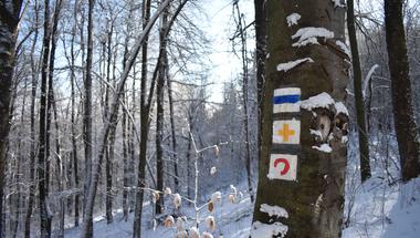 Oroszlán-szikla, budai csúcsok és Iluska körút - Téli túralehetőségek Budapest környékén