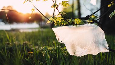 Gyűlölöm és szeretem - Mit fontos tudni a műanyagokról?