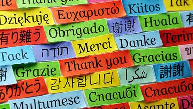 Tanórák, diákszervezetek és nyelvvizsgaközpont – Milyen nyelvtanulási lehetőségek vannak a Corvinuson?