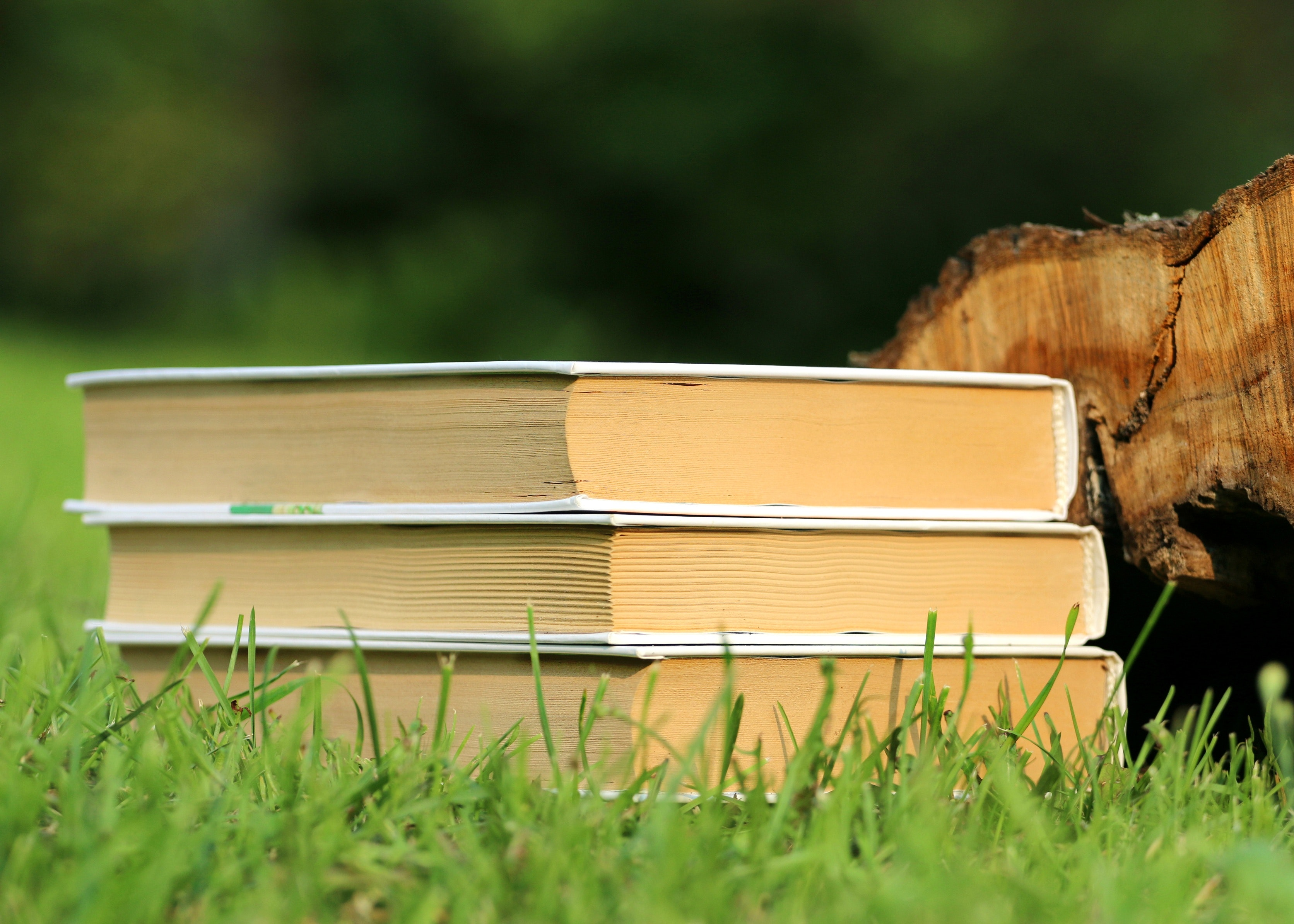 selective-focus-photography-of-3-book-piled-159544.jpg