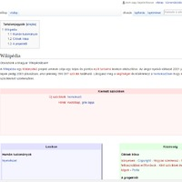 A magyar web kezdete...
