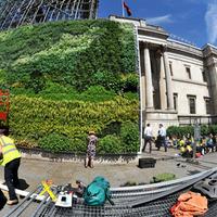 Elképesztő: Festmény élő növényekből