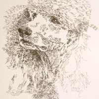 Kutyaportrék kézírással