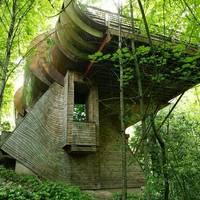 Dizájn - Elképesztő faház