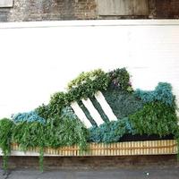 Street art - Virágokból Adidas Superstar