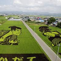Lenyűgöző mezőgazdasági területek