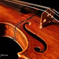 Hegedű javítás olcsón