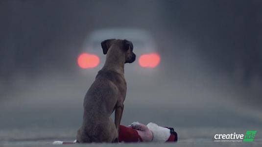 Szívszorító és sokkolóan őszinte rövidfilm a felelős állattartásról