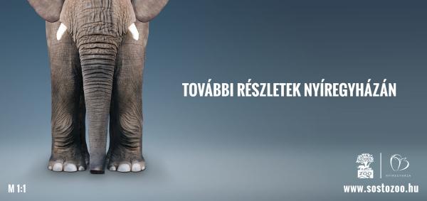 sosto_elephant_billboard_600.jpg