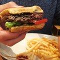 Mire jó a GMO 31. - Hamburger élesztőből