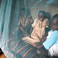 Mesterséges és természetes védelem a malária ellen