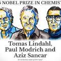 DNS-hibajavítás és Nobel díj