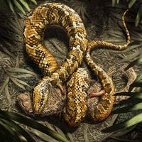 Kilóg a kígyóláb - 3.