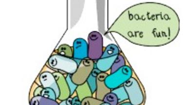 Altruista baktériumok
