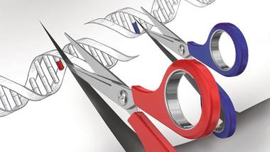 És ti mit gondoltok a genomszerkesztésről?