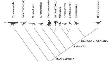 Más nézőpont a dinó-madár kapcsolatról