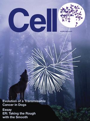Cell-CTVT-cover.jpg