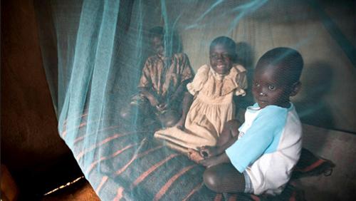 malaria_bed-net.jpeg