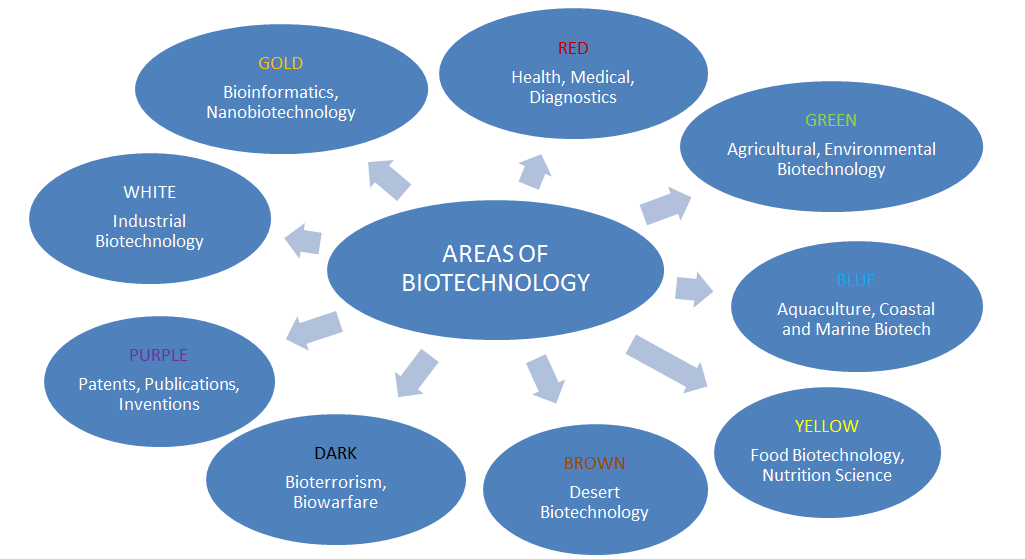 areas_of_biotechnology.png
