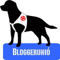 Bloggerunió: a vakvezető kutya modellje