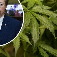 Horvátország az orvosi marihuána legalizációjára készül