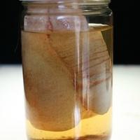 Férfi nemi szerveket gyűjtött – két évet is kaphat
