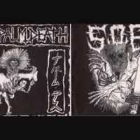 Napalm Death - Multinational Corporations