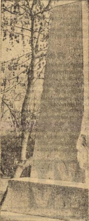 1968koleraoszlop.jpg