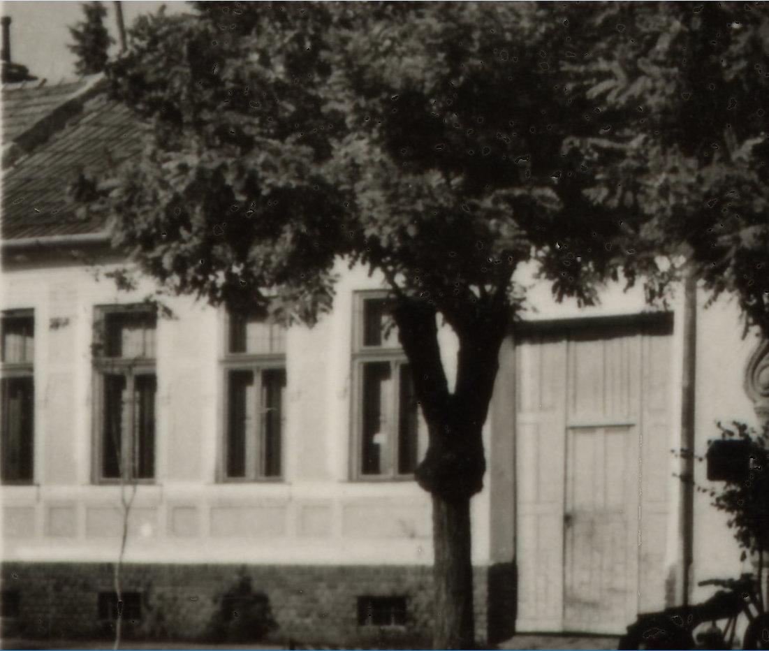 fj16.jpg