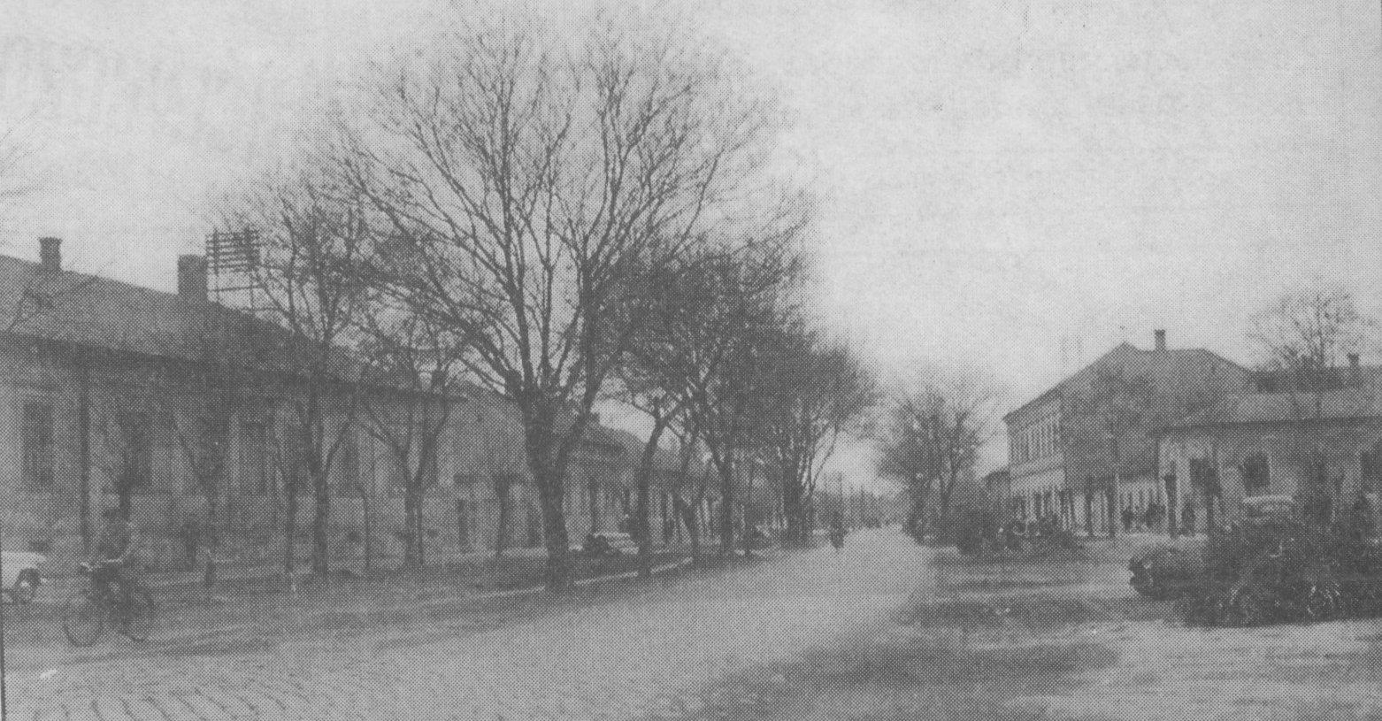 baross_utca_1960_korul.jpg