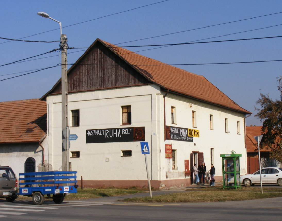 braun2011.jpg