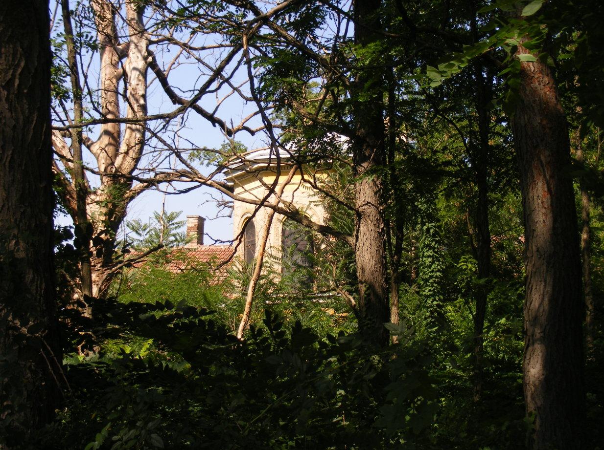 kapolna_2013.jpg
