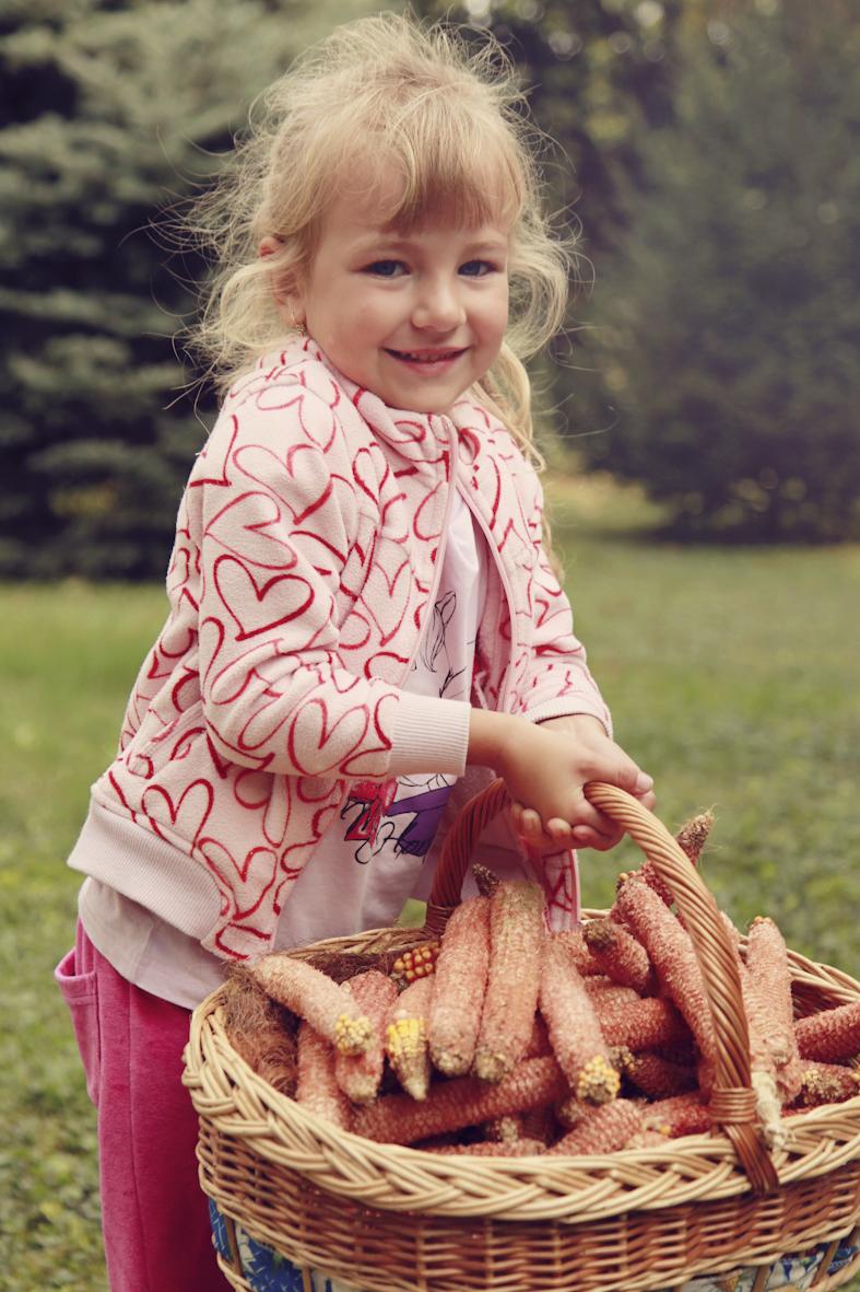 kukorica--30.jpg
