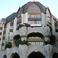 A magyaros ház