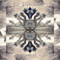 3rd Ear Experience - Stones of a Feather