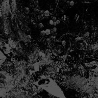 Primitive Man & Unearthly Trance - Split