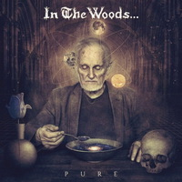 In the Woods... - Pure - 2016