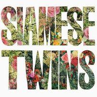 Siamese Twins - Still Corner