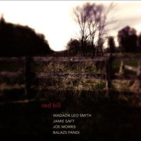 Wadada Leo Smith, Jamie Saft, Joe Morris, Balazs Pandi - Red Hill
