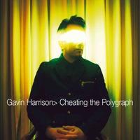 Gavin Harrison - Cheating the Polygraph