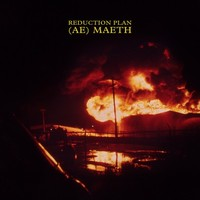 Reduction Plan - (Ae) Maeth