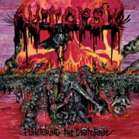 Autopsy - Puncturing the Grotesque - 2017