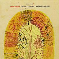 Angelica Sanchez / Wadada Leo Smith - Twine Forest
