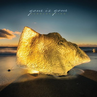 Gone is Gone - Echolocation - 2017