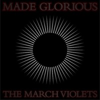 March Violets - Made Glorious