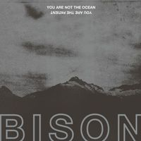 Bison B.C. - You are Not the Ocean You are the Patient
