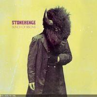 Stonehenge - Bunch of Bisons
