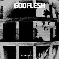 Godflesh - Decline & Fall - 2014