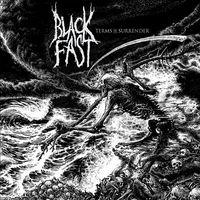 Black Fast - Terms of Surrender - 2015