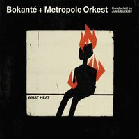 Bokanté + Metropole Orkest - What Heat